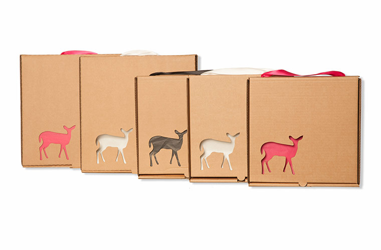 packaging, art, print, fawn, product, Dublin photography, shoot