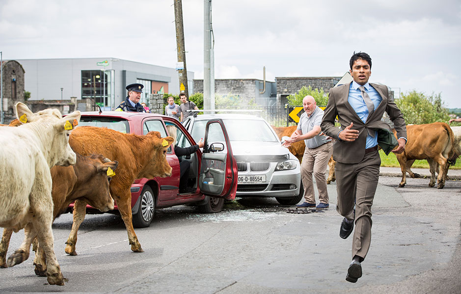 Irish movie, film, set still, mad, crazy, cows, chaos, running, ireland, cows,