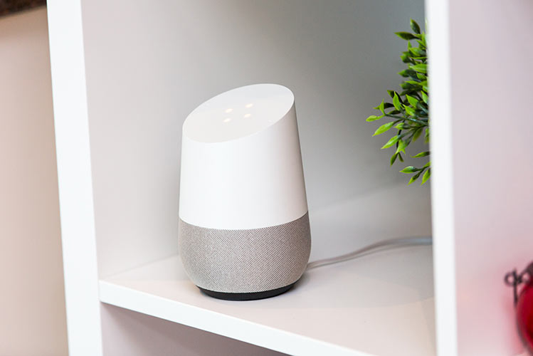 google home, shelf, plant, house